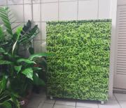 Adesivo Plantinha